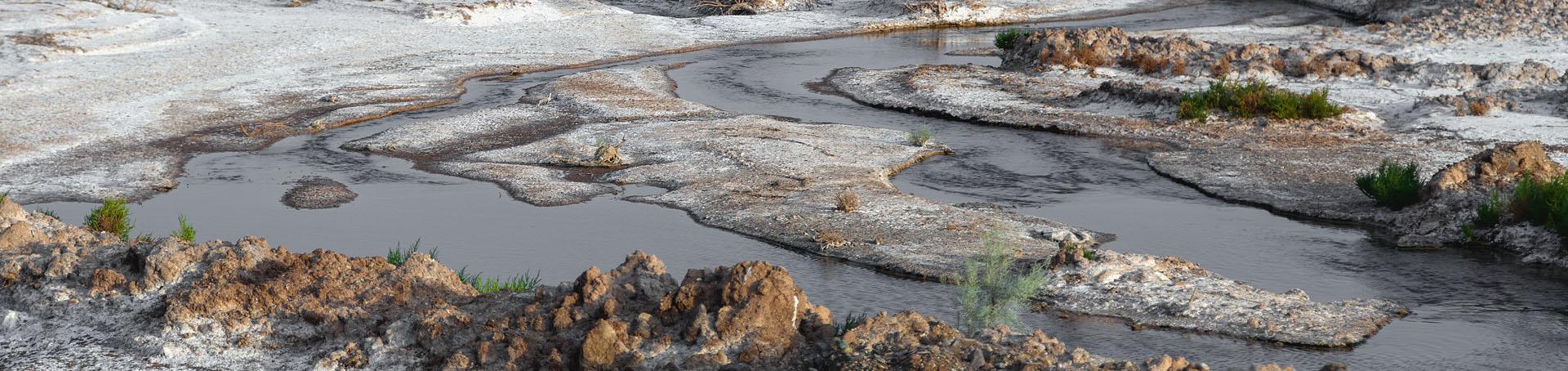 Hoze Marreh Wetland-Qom_Province